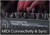 microbrute007