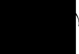 DPNew_black